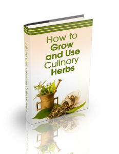 How to Grow and Use Culinary Herbs